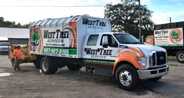 West Tree Service Team